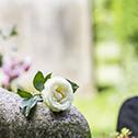 Teaserbild Blumenservice